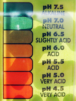 aquaponics ph level