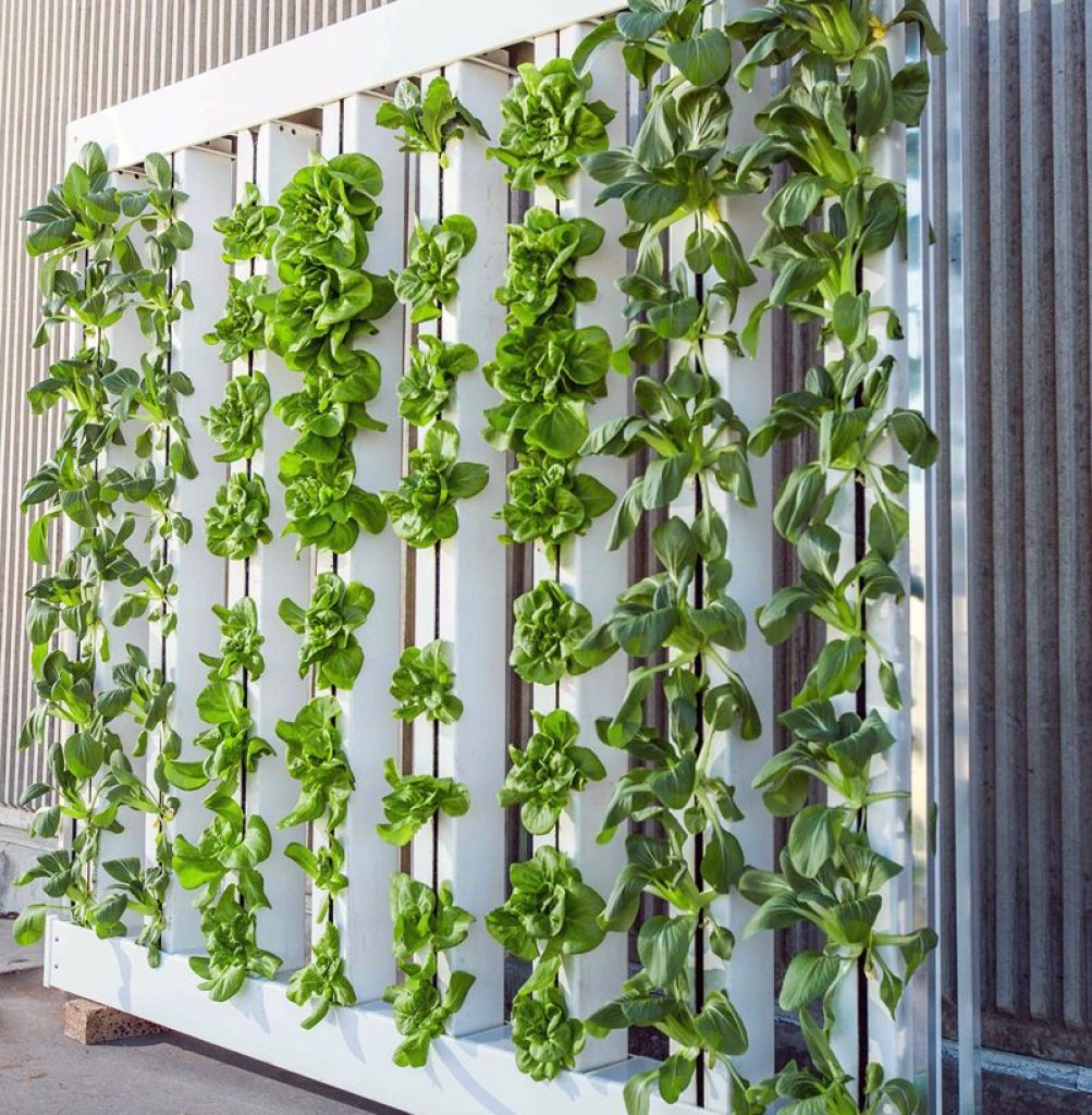 vertical farming systems