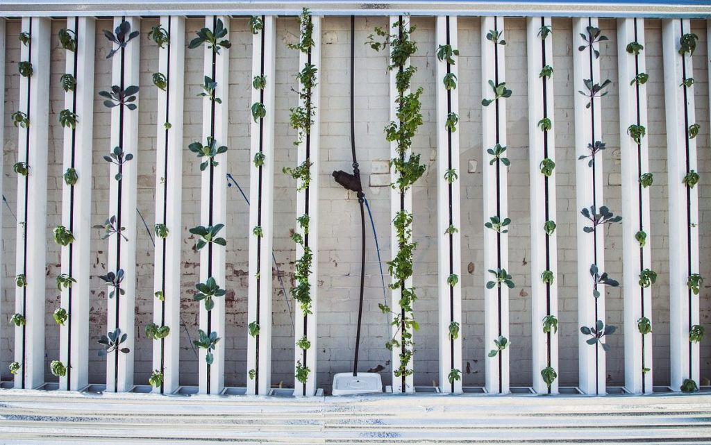 what is vertical farming