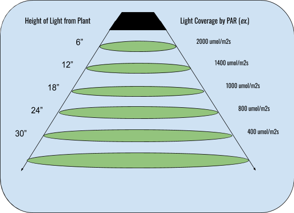 LED grow light coverage by PAR and distance